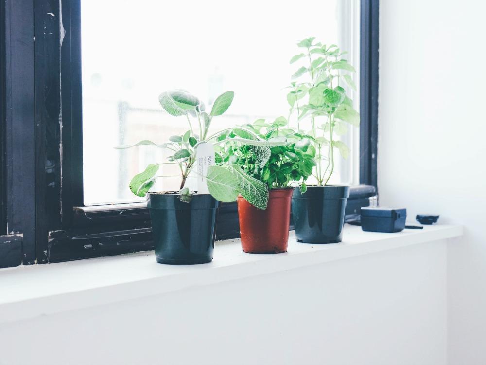 5 gr nde warum unordnung immer nachw chst 5 wir. Black Bedroom Furniture Sets. Home Design Ideas