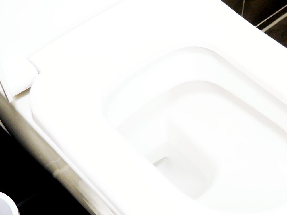 Toilette putzen