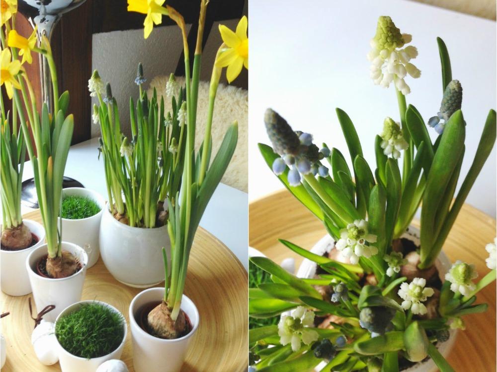 Frühjahrsputz im Wohnzimmer