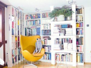 aufgeräumtes Bücherregal