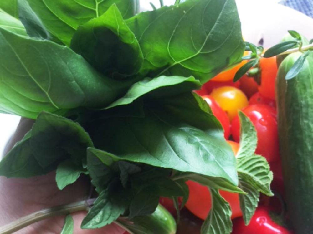 eigenes Gemüse vom Balkon