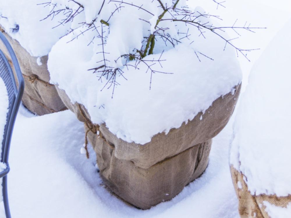 Den Balkon Winterfest Machen Mein Kleiner Garten