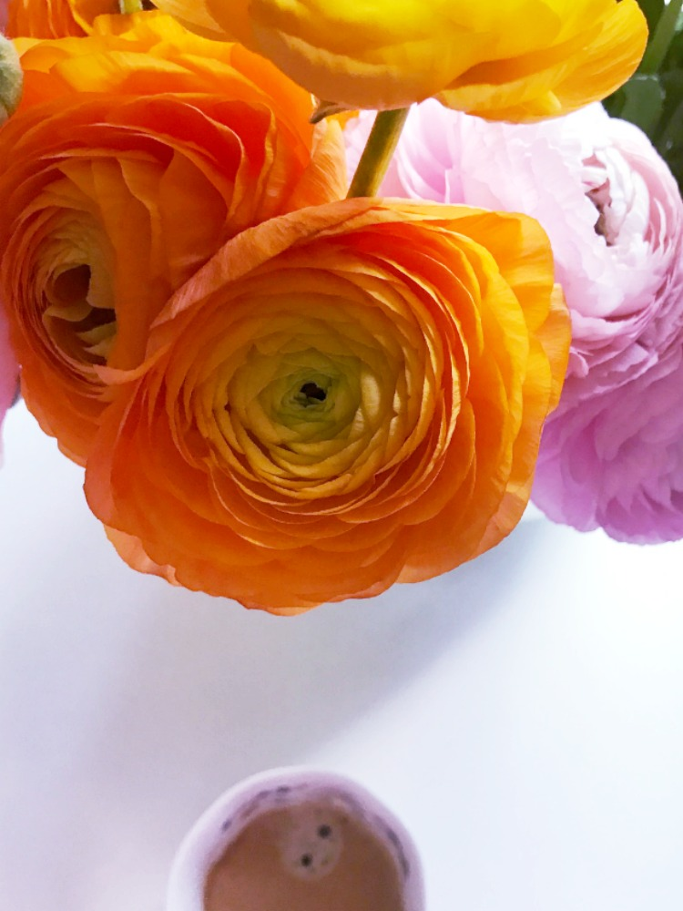 Wie halten Schnittblumen länger