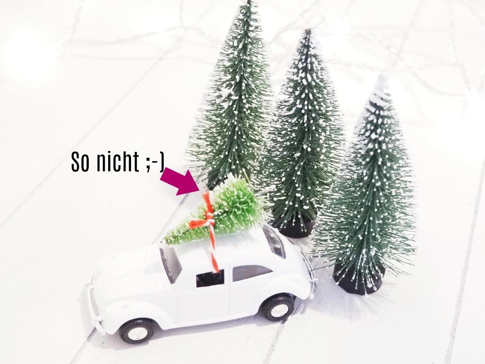 Weihnachtsbaum haltbar transportieren
