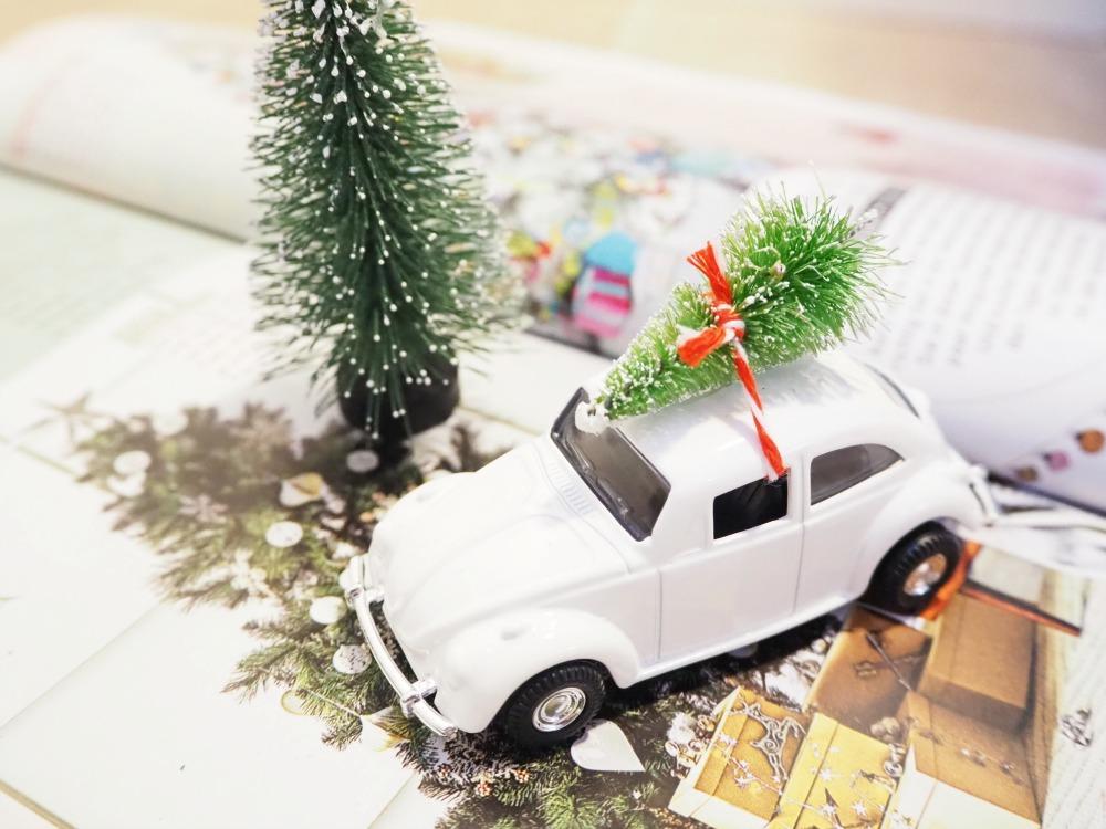 Weihnachtsbaum lange haltbar